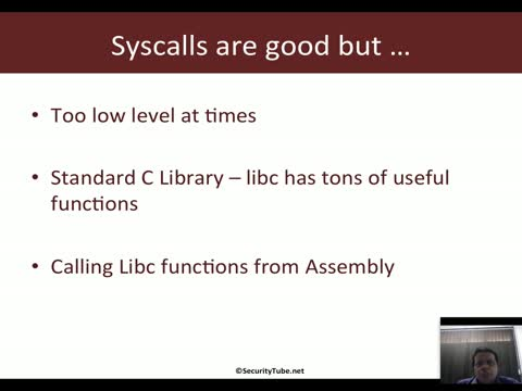 Libc and NASM | x86 Assembly Language and Shellcoding on Linux