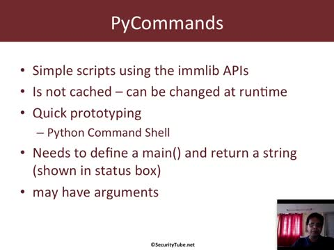 Module 5: Immunity Debugger Scripting Basics