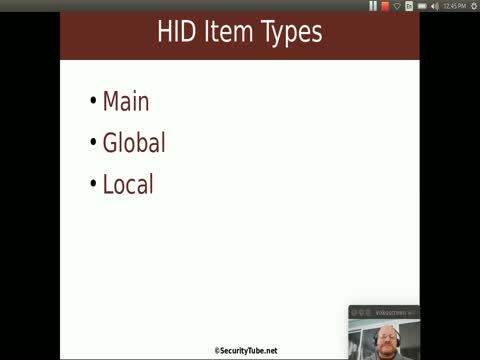 HID Descriptors and Reports